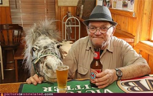 beer,old man,pony,wtf
