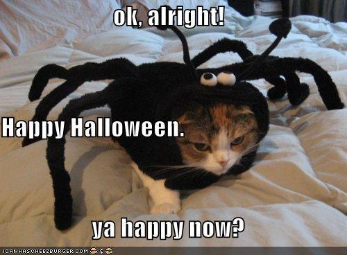 ok, alright! Happy Halloween. ya happy now?