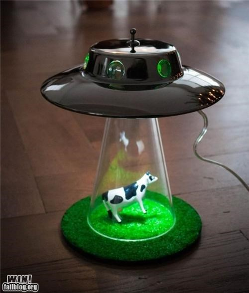 clever,cows,lamp,ufo