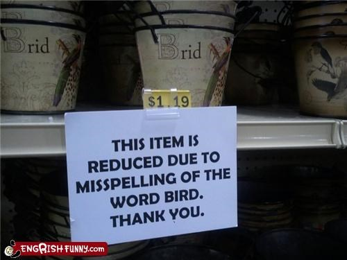 bird,brid,misspelling