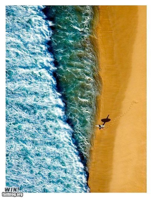 ariel shot beach Photo the ocean - 4888900352