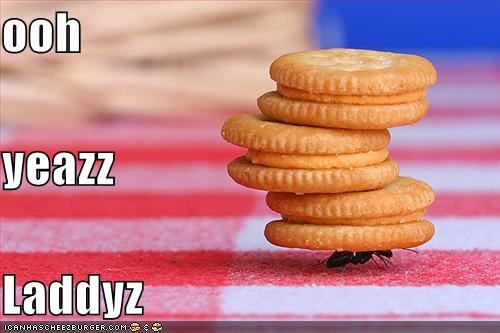 Cheezburger Image 4889377536