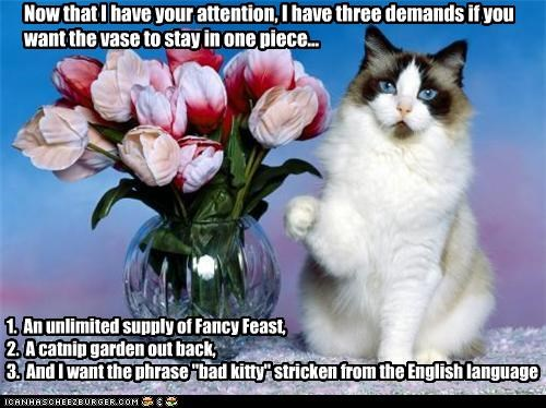 "Now that I have your attention, I have three demands if you want the vase to stay in one piece... 1. An unlimited supply of Fancy Feast, 2. A catnip garden out back, 3. And I want the phrase ""bad kitty"" stricken from the English language"