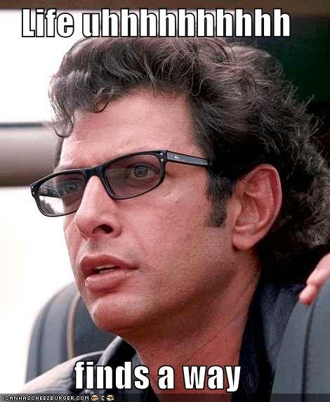 actor celeb funny jeff goldblum jurassic park - 4890464256