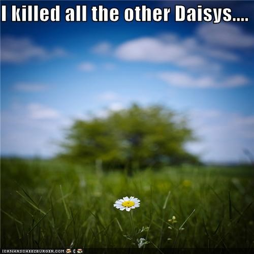 alone daisy highlander hipsterlulz - 4891065344