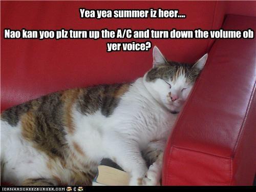 Yea yea summer iz heer.... Nao kan yoo plz turn up the A/C and turn down the volume ob yer voice?