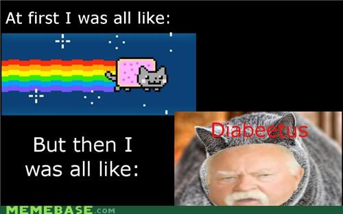 but-its-for-the-sake-of-a-joke diabeetus i-know-its-much Nyan Cat pop tarts wilford brimley - 4891800064