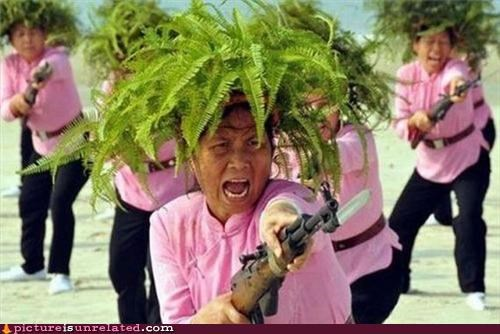 bayonets guns old ladies pink wtf