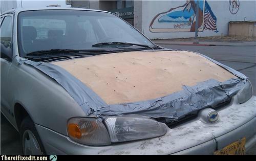 cardboard,cars,hood,wtf