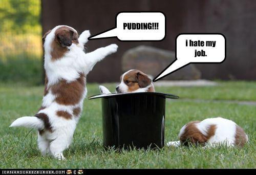 PUDDING!!! i hate my job.
