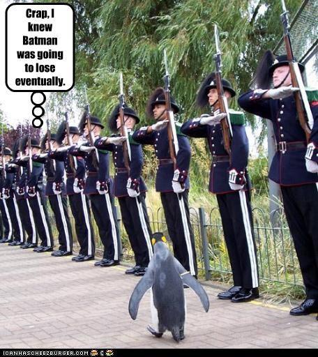 army batman penguins political pictures - 4894033408