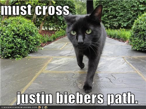 must cross  justin biebers path.