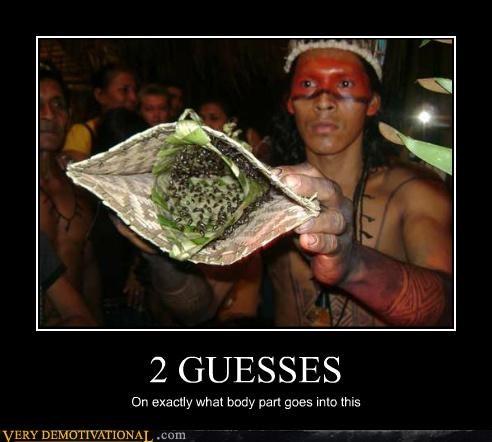 2 guesses bugs creepy eww Terrifying - 4894168320