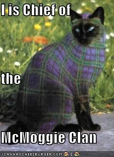 I is Chief of the McMoggie Clan