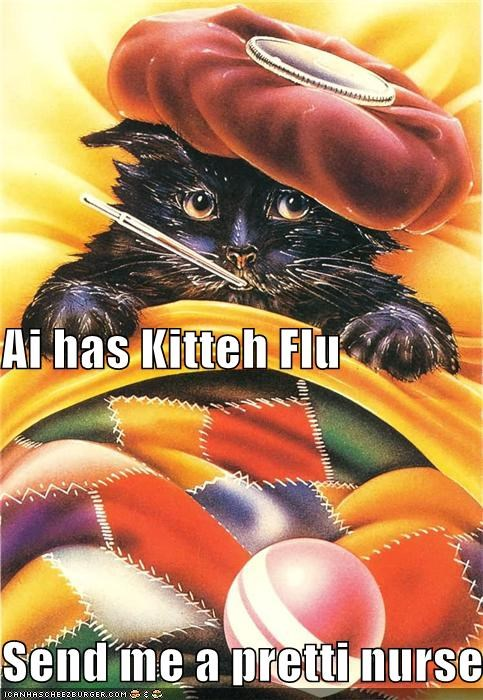 Ai has Kitteh Flu Send me a pretti nurse