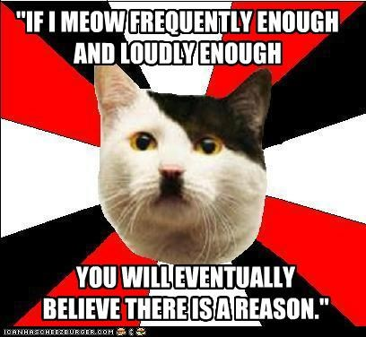 animemes,cat,dictator,hitler,Lenin Cat,mew,reason