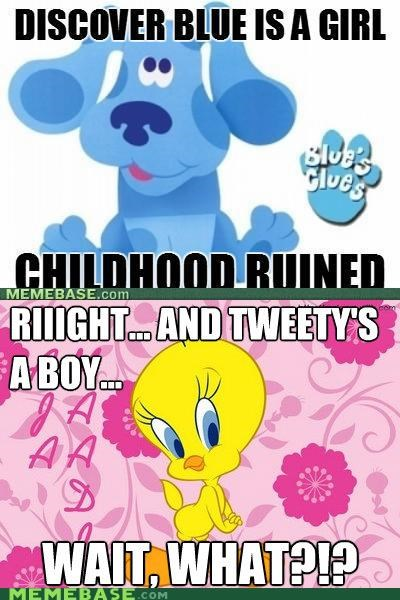animals blues clues kids Memes television tweety - 4896028160