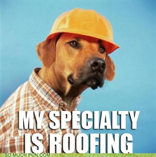 dogs,double meaning,literalism,onomatopoeia,roof,roofing,sound
