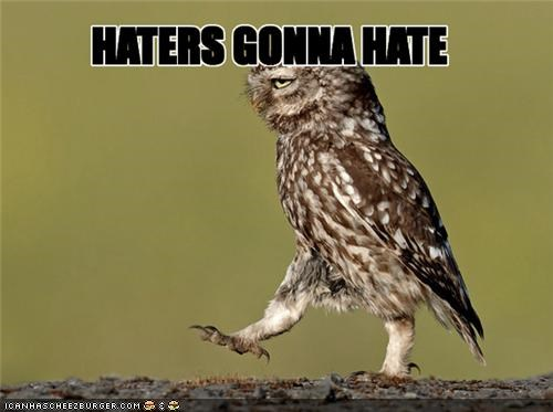 birds caption captioned haters haters gonna hate Memes owls walking - 4897048832