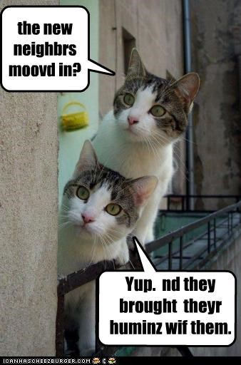the new neighbrs moovd in? Cleverness Here Yup. nd they brought theyr huminz wif them.
