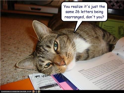 26 caption captioned cat explanation Hall of Fame just language letters question realize rearranged same sarcasm - 4897740544