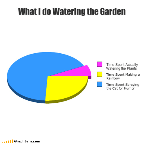 cat garden hose Pie Chart watering - 4897937152