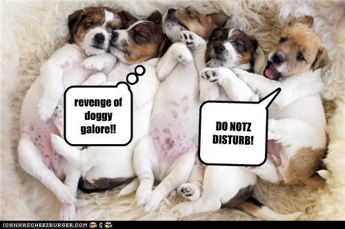 DO NOTZ DISTURB! revenge of doggy galore!!