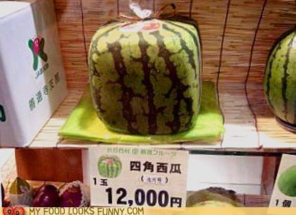 cube,expensive,fruit,Japan,ridiculous,Square,watermelon
