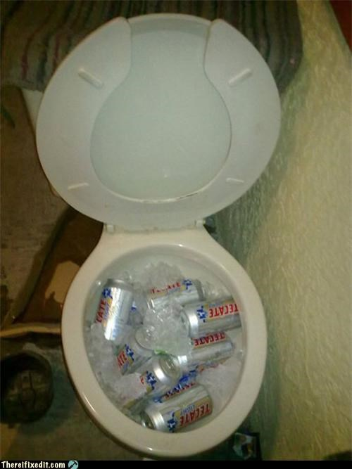 beer dual use toilet
