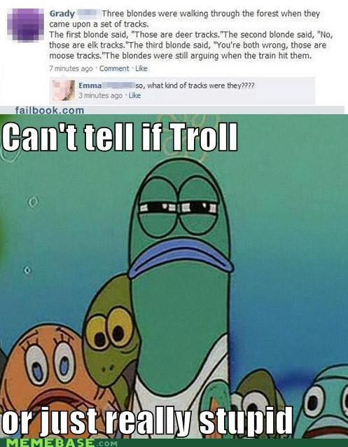 cant tell facebook failbook fry stupid tracks trolling - 4899392768