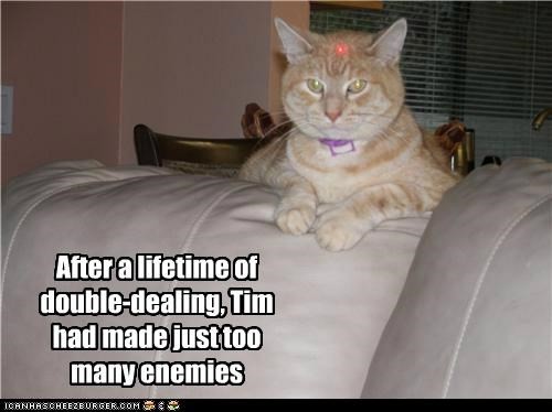 caption captioned cat double dealing enemies laser laser pointer sight sniper tabby too many