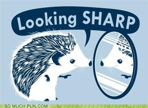 double meaning,Hall of Fame,hedgehog,literalism,looking,mirror,sharp