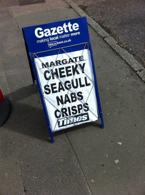 Cheeky Seagul,Kent People Problems,Meanwhile In Margate,Not The Onion,Paging Hitchcock,Slowest News Day Ever
