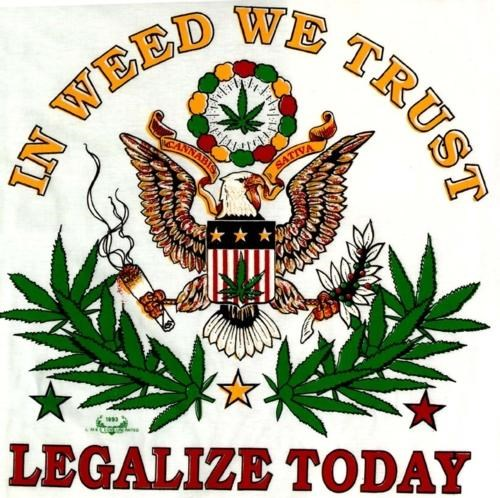 barney frank Historic Legislation Legalize It Marijuana Debate Ron Paul - 4900428288