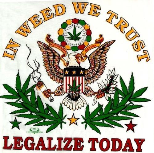 Legalize It Ron Paul - 4900428288