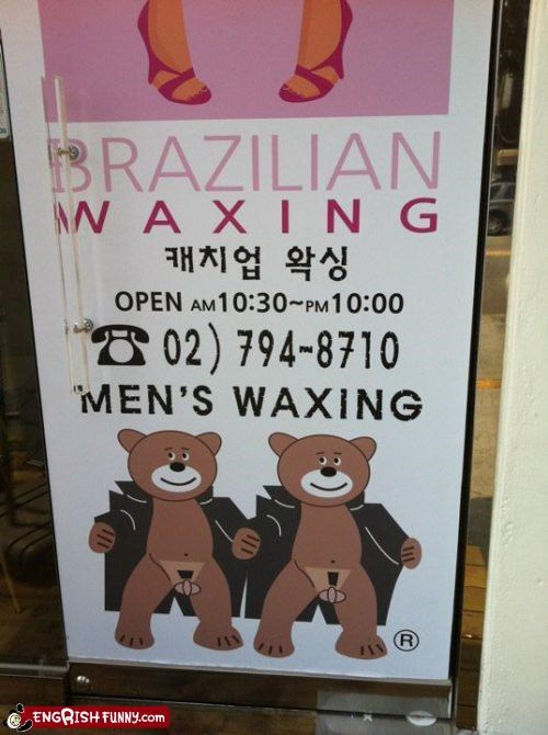 bears,brazilian wax,flashing,wax