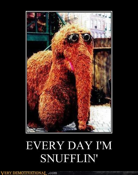 everyday hilarious Sesame Street snuffleupagus