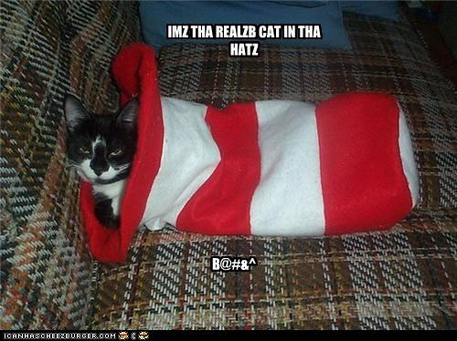 IMZ THA REALZB CAT IN THA HATZ B@#&^