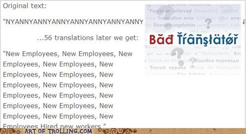 Bad Translator new employees nyan nyancat