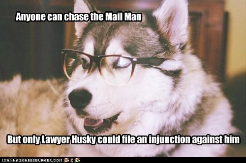 Anyone can chase the Mail Man But only Lawyer Husky could file an injunction against him