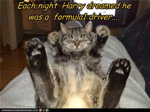 Each night Harry dreamed he was a formula1 driver....