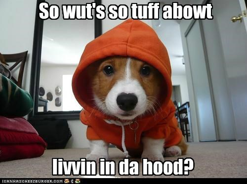 So wut's so tuff abowt livvin in da hood?