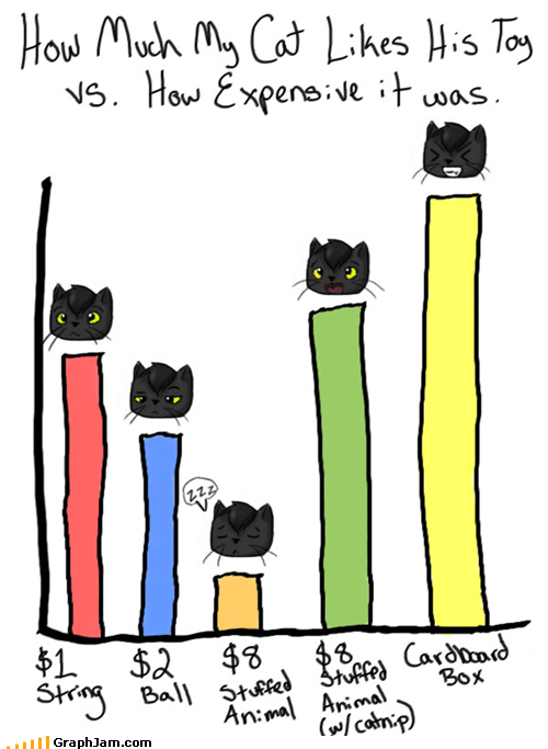 Bar Graph cat cute toys - 4904079872