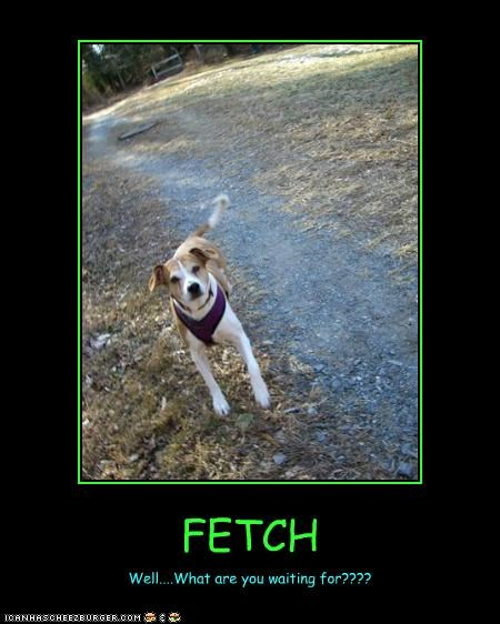 FETCH Well....What are you waiting for????