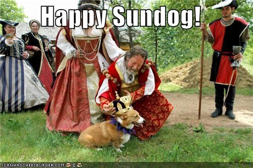 corgi crown king renn faire Sundog