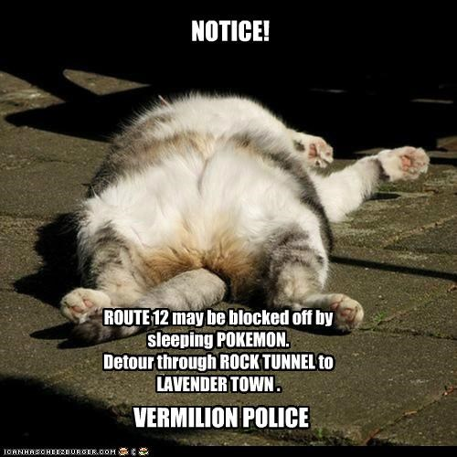 NOTICE! ROUTE 12 may be blocked off by sleeping POKEMON. Detour through ROCK TUNNEL to LAVENDER TOWN . VERMILION POLICE