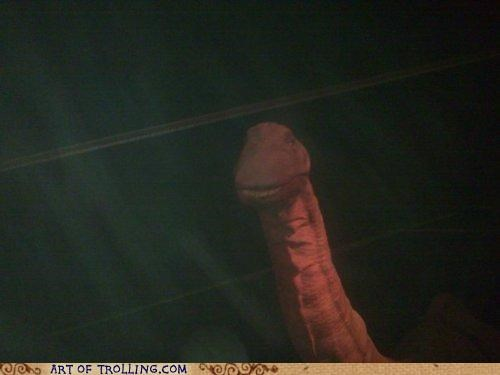 dinosaur,dirty mind,that looks naughty