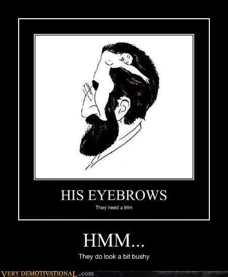 eyebrows hilarious Sexy Ladies wtf - 4905952512