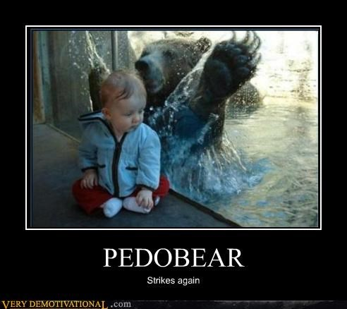 baby,bear,hilarious,pedo bear