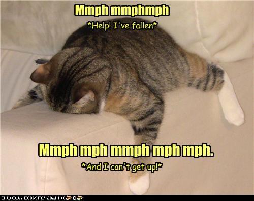 Mmph mmphmph Mmph mph mmph mph mph. *Help! I've fallen* *And I can't get up!*
